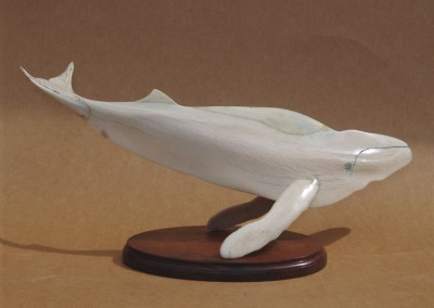 2008 09 Whale .195 x .610 x .190 d