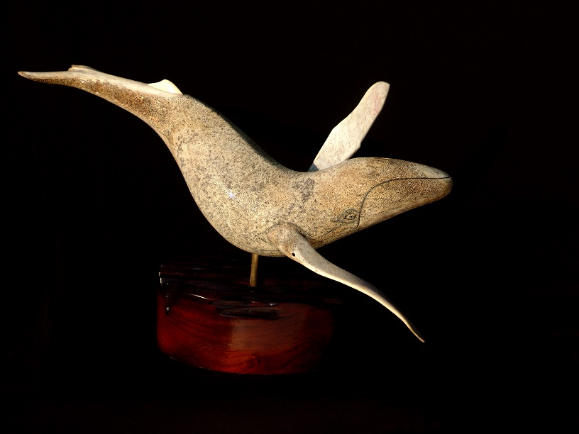 """ Winged Whale"""